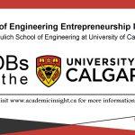 Engineering Entrepreneurship job